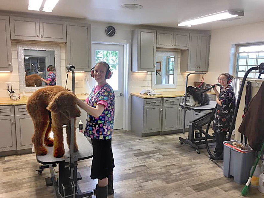 grooming services for pets in Manheim, PA
