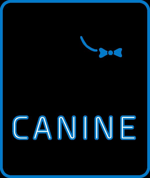 Dog Boarding | Dog Resort & Spa | Manheim, PA | Lancaster County